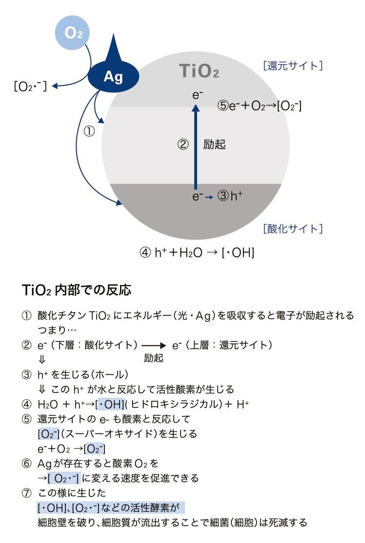 image03_sp.jpg